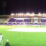 Fiorentina, gli abbonamenti 2014/15: ora serve la tessera In Viola Gold