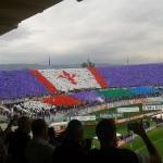 Giuseppe Rossi in campo tra Nazionale e Fiorentina